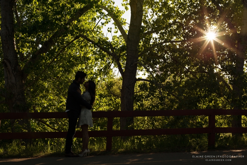 Engagement Photography Edmonton Wedding Photographers